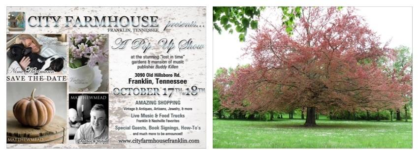 City Farmhouse Pop-Up Show
